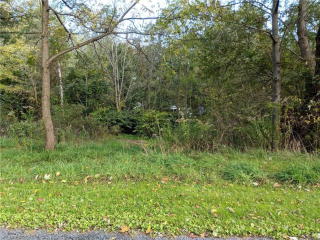 Linda St, Akron, OH 44319 (MLS #4047122) :: RE/MAX Edge Realty