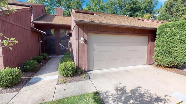 307 Katey Rose Ln #307, Euclid, OH 44143 (MLS #4047250) :: RE/MAX Edge Realty