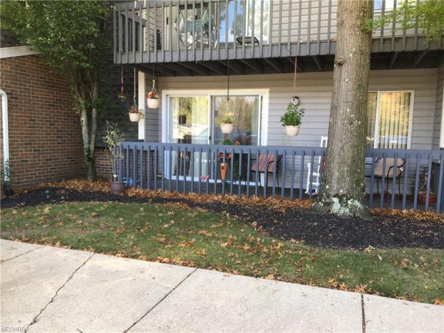 6225 Hidden Creek Dr #122, Lorain, OH 44053 (MLS #4047626) :: RE/MAX Trends Realty