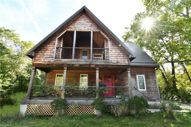 181 N Maple Street, Akron, OH 44304 (MLS #4048393) :: The Holden Agency