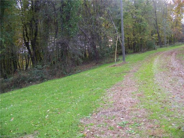 11601 Sprucevale Rd, East Liverpool, OH 43920 (MLS #4048418) :: RE/MAX Valley Real Estate