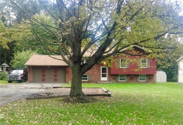 1297 Niles Cortland Rd NE, Warren, OH 44484 (MLS #4048617) :: The Crockett Team, Howard Hanna