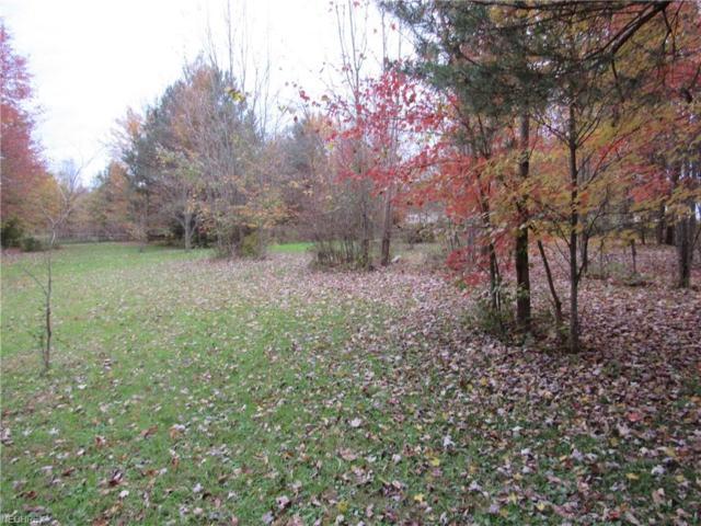 Shanks Phalanx Rd, Southington, OH 44470 (MLS #4048632) :: RE/MAX Valley Real Estate