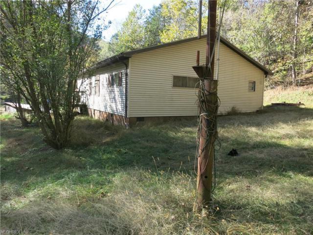 492 Brohard Rd, Brohard, WV 26138 (MLS #4048634) :: RE/MAX Valley Real Estate