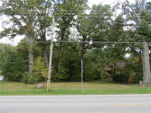 Mahoning Avenue, Lake Milton, OH 44429 (MLS #4048695) :: The Crockett Team, Howard Hanna
