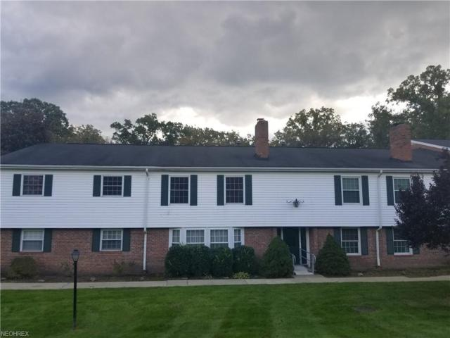 7050 Carriage Hill Dr #201, Brecksville, OH 44141 (MLS #4048850) :: RE/MAX Trends Realty