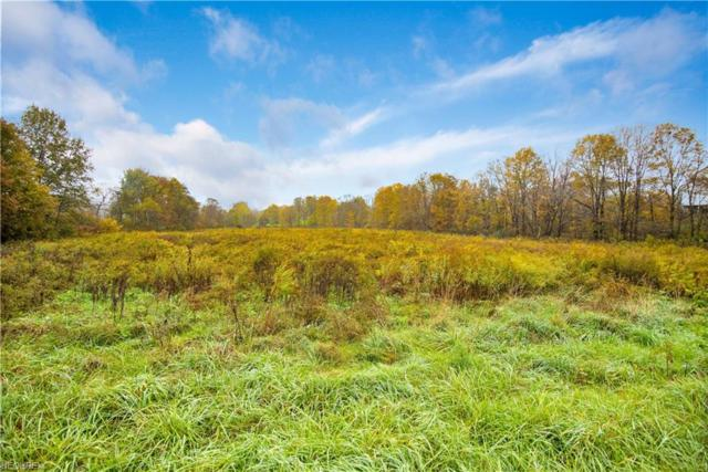 Adams Rd, Lisbon, OH 44432 (MLS #4048878) :: RE/MAX Valley Real Estate