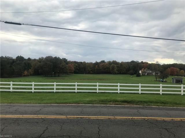 Geib Ave NE, Hartville, OH 44632 (MLS #4049593) :: RE/MAX Trends Realty