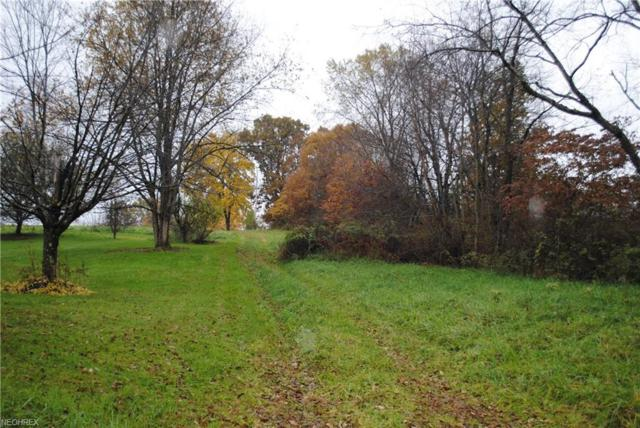49375 Quay Rd, Negley, OH 44441 (MLS #4049717) :: RE/MAX Valley Real Estate