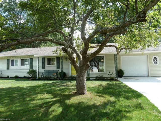 24320 Randolph Rd, Bedford Heights, OH 44146 (MLS #4049888) :: RE/MAX Edge Realty