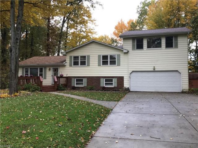 201 Corriedale, Cortland, OH 44410 (MLS #4050021) :: RE/MAX Valley Real Estate