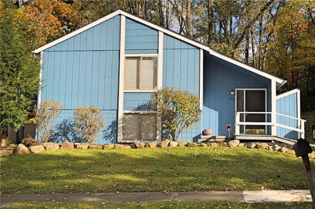 1017 Cree Ave, Akron, OH 44305 (MLS #4050155) :: RE/MAX Trends Realty
