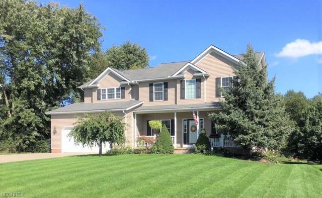 449 Rolling Hills Dr, Wadsworth, OH 44281 (MLS #4050607) :: The Crockett Team, Howard Hanna