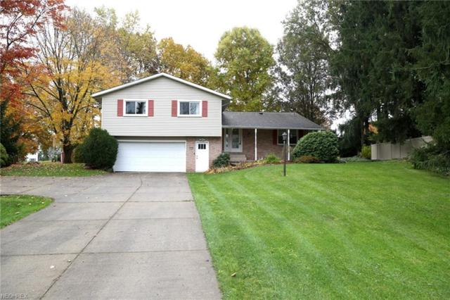 1435 Galaxy Cir, Mogadore, OH 44260 (MLS #4050713) :: RE/MAX Trends Realty