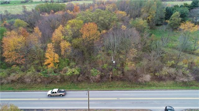 State Route 302, Polk, OH 44866 (MLS #4050744) :: The Art of Real Estate