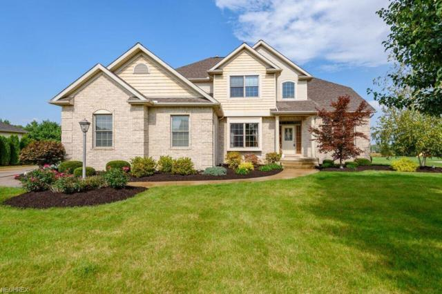 9163 Hunters Chase St NW, Massillon, OH 44646 (MLS #4051098) :: The Kaszyca Team