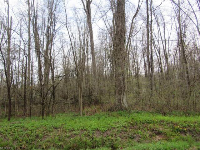Herner County Line Rd, Southington, OH 44470 (MLS #4051152) :: RE/MAX Valley Real Estate