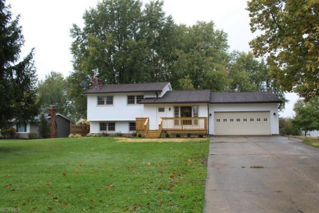 10091 N Delmonte Blvd, Streetsboro, OH 44241 (MLS #4051344) :: RE/MAX Trends Realty