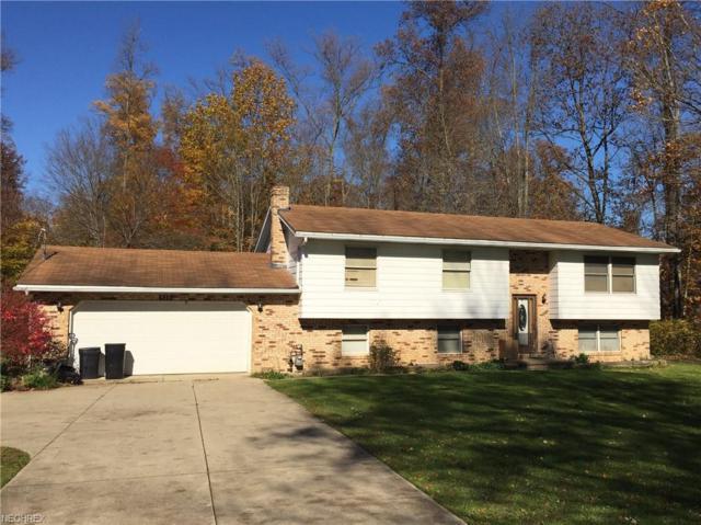 935 Perkins Jones Rd NE, Warren, OH 44483 (MLS #4051568) :: The Crockett Team, Howard Hanna