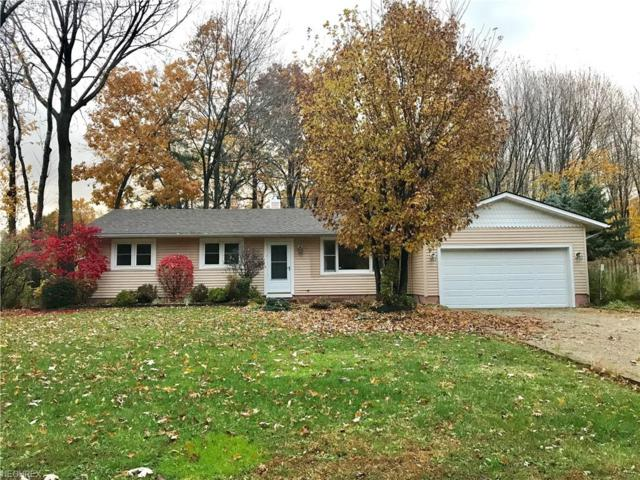 6425 Hopkins Rd, Mentor, OH 44060 (MLS #4052034) :: RE/MAX Trends Realty