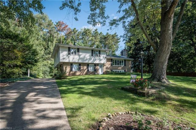 5825 Lasater Dr NW, Canton, OH 44718 (MLS #4052484) :: The Kaszyca Team