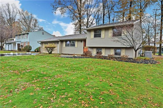 386 Stahl Ave, Cortland, OH 44410 (MLS #4052667) :: RE/MAX Valley Real Estate