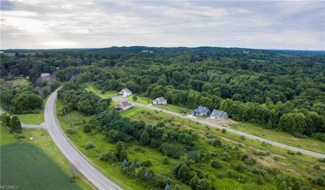 Lot #9 7028 Village Way Dr, Hiram, OH 44234 (MLS #4052711) :: RE/MAX Edge Realty