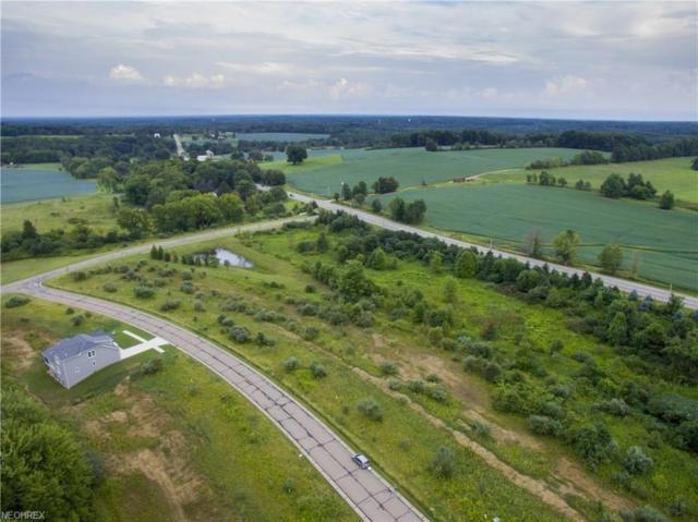 Lot #30  7053 Village Way Dr, Hiram, OH 44234 (MLS #4052857) :: RE/MAX Valley Real Estate