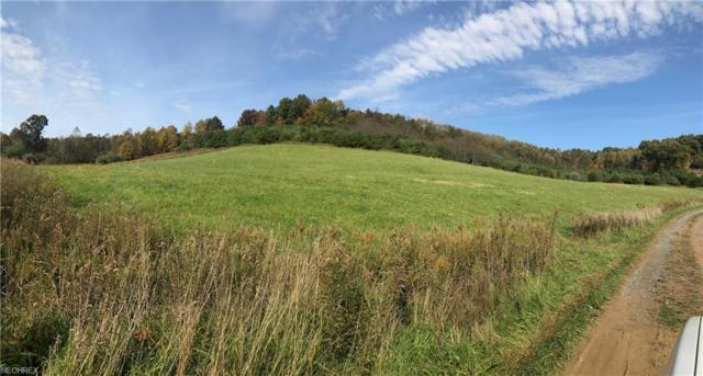 9185 Tunnel Hill Rd NE, Mineral City, OH 44656 (MLS #4053655) :: RE/MAX Valley Real Estate