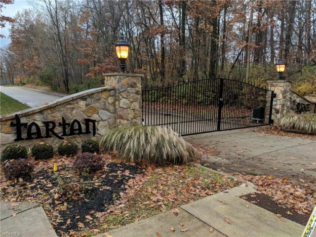Lochwood, Wooster, OH 44691 (MLS #4054161) :: RE/MAX Valley Real Estate