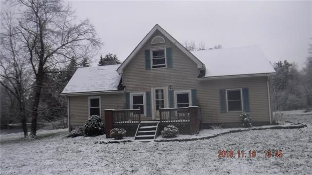 6128 Allyn Rd, Hiram, OH 44234 (MLS #4054186) :: RE/MAX Valley Real Estate