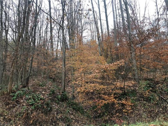 Middle Run Rd NE, Dover, OH 44622 (MLS #4054326) :: RE/MAX Valley Real Estate