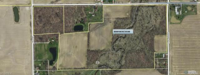 Leroy Rd, Wakeman, OH 44889 (MLS #4054362) :: RE/MAX Valley Real Estate