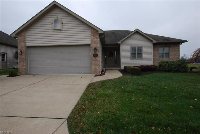 115 Stonehaven Dr, Columbiana, OH 44408 (MLS #4054397) :: RE/MAX Valley Real Estate