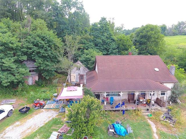 36600 Bower Road County Road 43, Scio, OH 43988 (MLS #4055000) :: RE/MAX Edge Realty