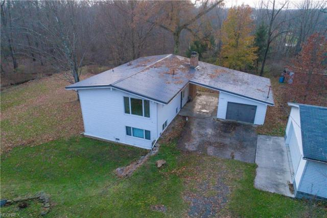 2661 Niles Cortland Rd NE, Cortland, OH 44410 (MLS #4055042) :: Ciano-Hendricks Realty Group
