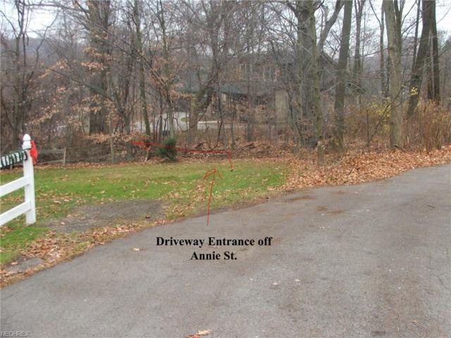 5705 Annie St. St, Lowellville, OH 44436 (MLS #4055381) :: RE/MAX Valley Real Estate