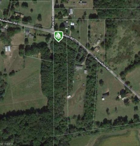 Lot 41 SE Knowlton Road, Garrettsville, OH 44231 (MLS #4055414) :: The Crockett Team, Howard Hanna
