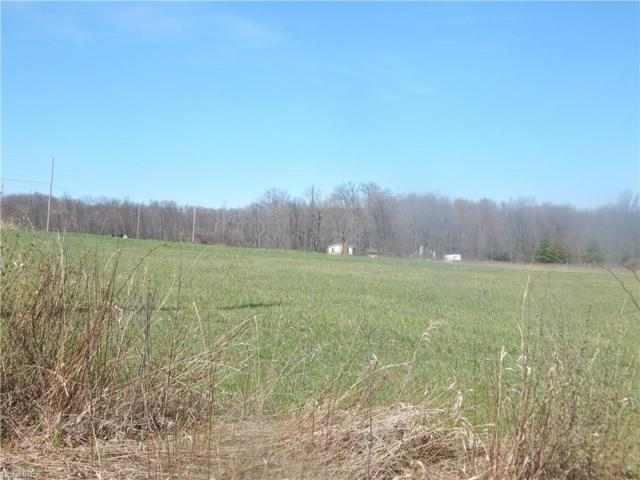 Albright Mckay SE, Brookfield Township, OH 44403 (MLS #4055936) :: RE/MAX Edge Realty
