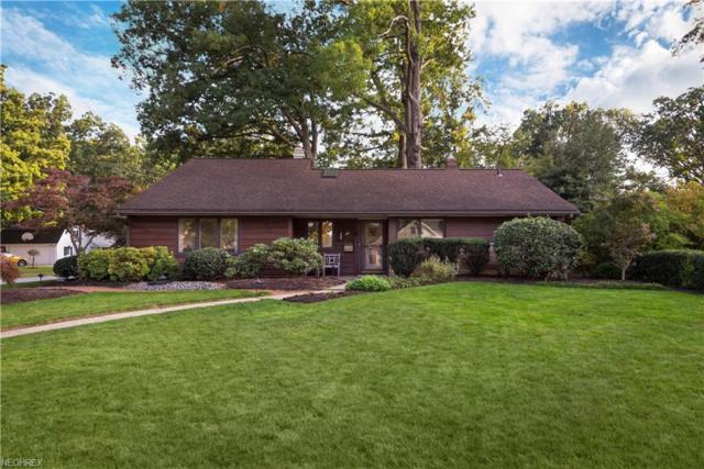 25315 Wolf Rd, Bay Village, OH 44140 (MLS #4056034) :: RE/MAX Valley Real Estate