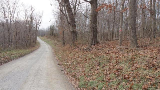 Township Road 124, New Lexington, OH 43764 (MLS #4056136) :: RE/MAX Valley Real Estate