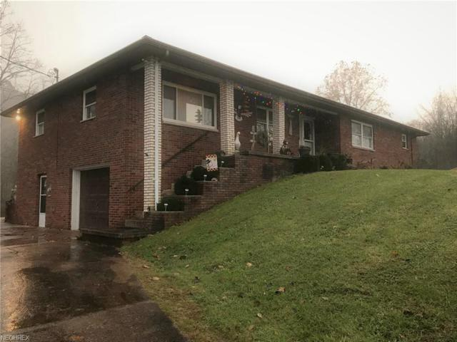 10682 Ravenswood, Ravenswood, WV 26164 (MLS #4056194) :: RE/MAX Valley Real Estate