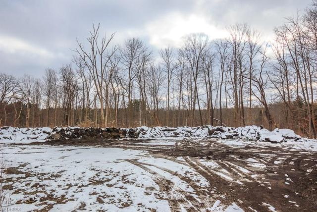 V/L Mayfield Rd, Chardon, OH 44024 (MLS #4056889) :: RE/MAX Edge Realty