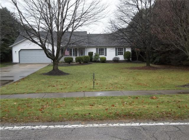 3968 Call Rd, Perry, OH 44081 (MLS #4056934) :: RE/MAX Valley Real Estate