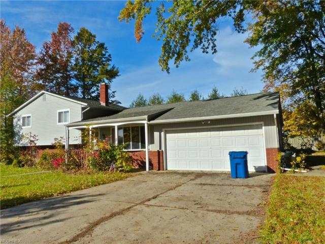 867 Skinner Ave, Painesville, OH 44077 (MLS #4057218) :: RE/MAX Edge Realty