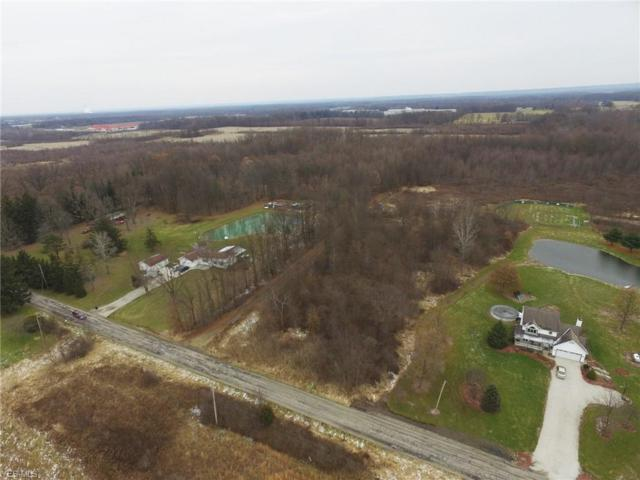 S Duck Creek Rd, North Jackson, OH 44451 (MLS #4057286) :: RE/MAX Edge Realty