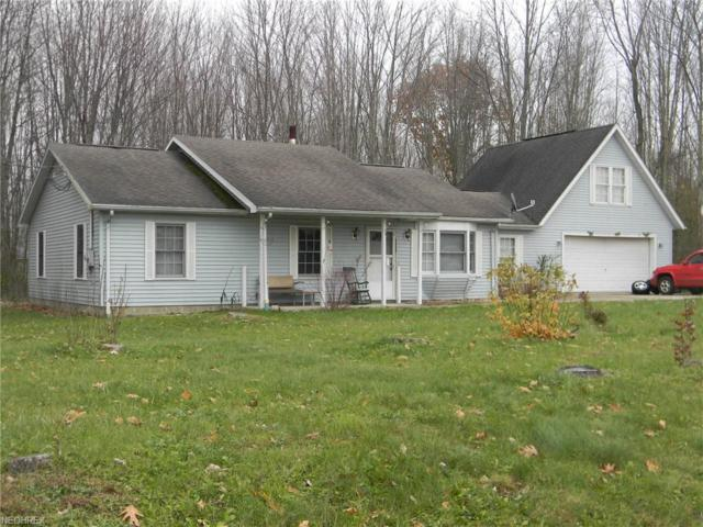 1318 Lake Vue Dr, Roaming Shores, OH 44085 (MLS #4057314) :: RE/MAX Valley Real Estate