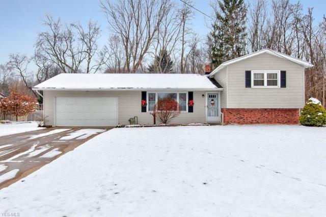 60 Dunbar Ct, Painesville, OH 44077 (MLS #4057988) :: The Crockett Team, Howard Hanna