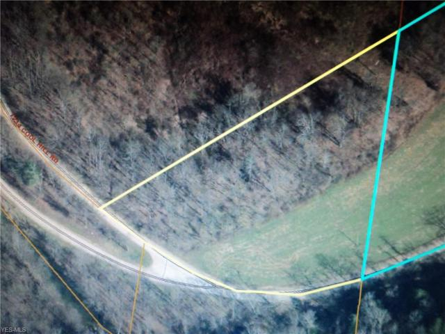 0 Twp Road 234, Jacobsburg, OH 43933 (MLS #4058353) :: Tammy Grogan and Associates at Cutler Real Estate
