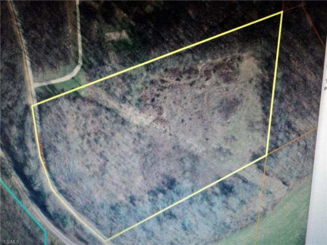 0 Twp 101 At Twp 234, Jacobsburg, OH 43933 (MLS #4058356) :: Tammy Grogan and Associates at Cutler Real Estate